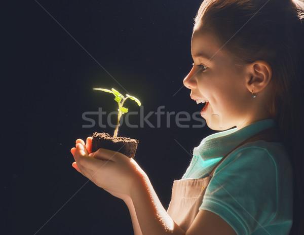 Lány ültet palánták aranyos kicsi gyermek Stock fotó © choreograph