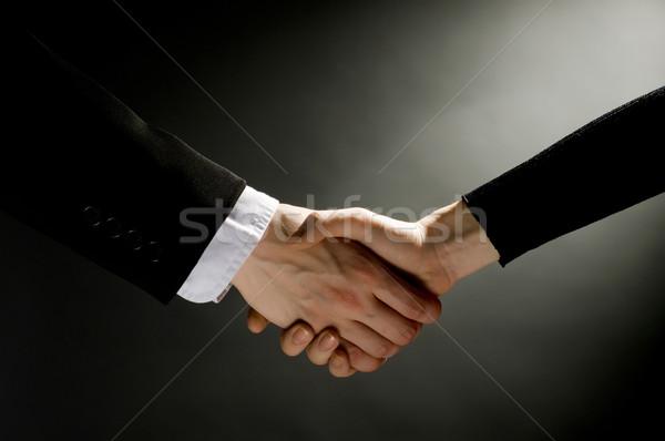 Stretta di mano partner business mano segno Foto d'archivio © choreograph