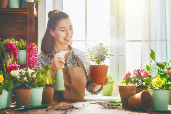 woman caring for her plants. Stock photo © choreograph
