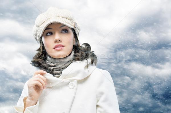 wintertime Stock photo © choreograph