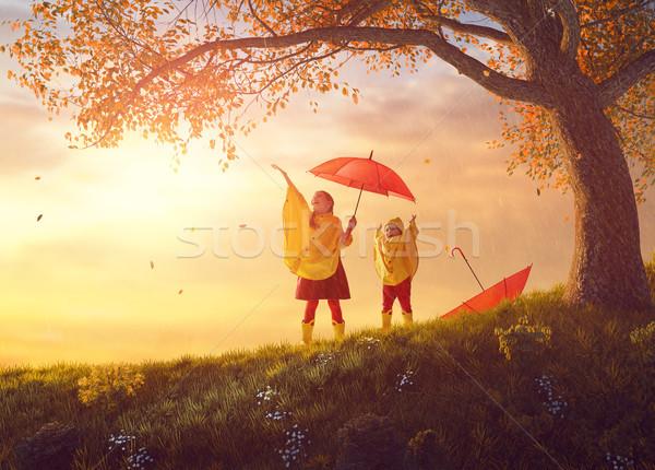 çocuklar sonbahar duş iki mutlu komik Stok fotoğraf © choreograph