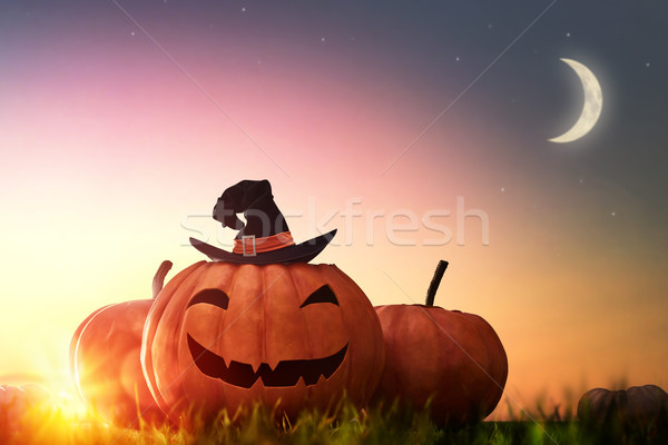 pumpkin and hat witch on sunset Stock photo © choreograph