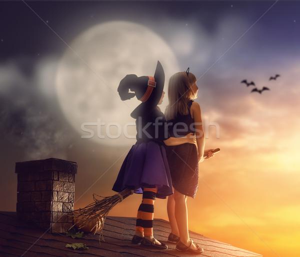Sorelle halloween due felice divertente ragazzi Foto d'archivio © choreograph