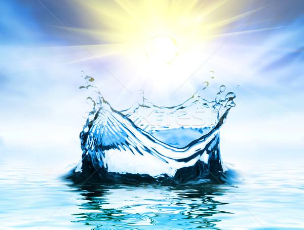 water drops Stock photo © choreograph
