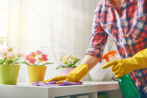 woman makes cleaning Stock photo © choreograph