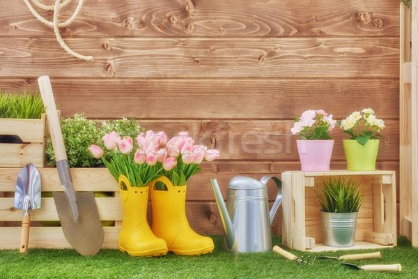 Kerti eszközök fű udvar friss virágok növények Stock fotó © choreograph