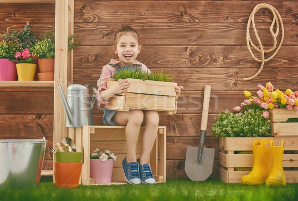 Lány gondoskodó növények aranyos gyermek kislány Stock fotó © choreograph