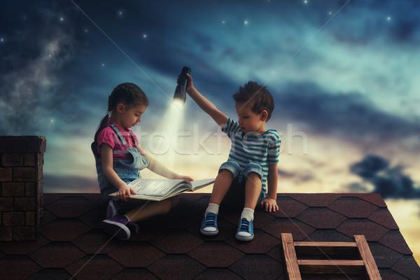 子供 読む 図書 座って 屋根 家 ストックフォト © choreograph