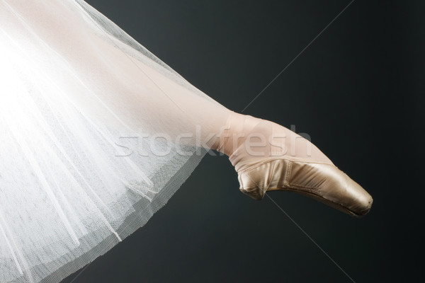 legs in ballet shoes Stock photo © choreograph