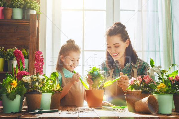 Mom and daughter engaged in gardening Stock photo © choreograph