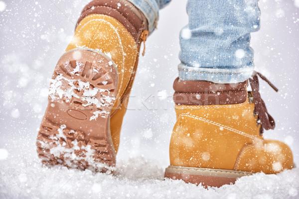 walk in the snow Stock photo © choreograph