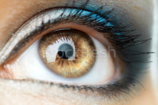 Schoonheid oog macro afbeelding vrouw mode Stockfoto © choreograph