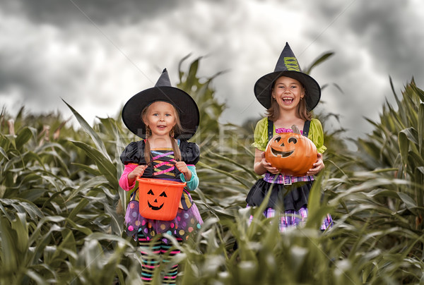 Kinder Halloween glücklich zwei cute wenig Stock foto © choreograph