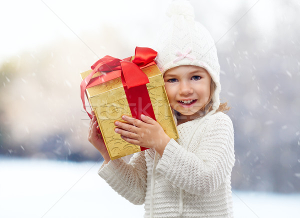 christmas gift Stock photo © choreograph