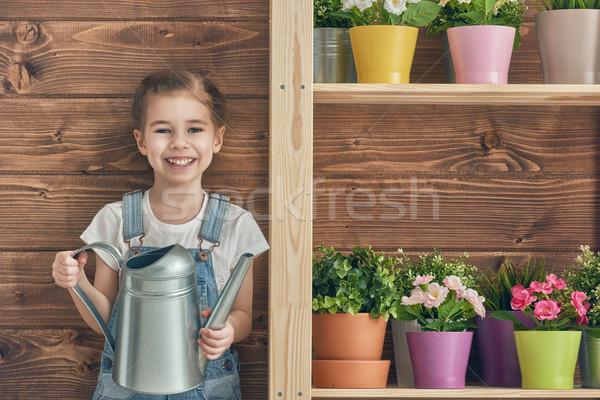 Lány gondoskodó növények aranyos gyermek locsol Stock fotó © choreograph