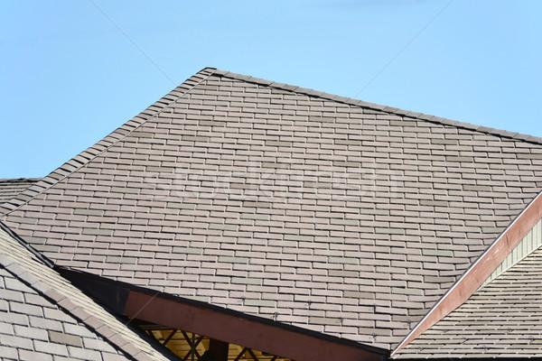 屋上 ブラウン 建物 青 アーキテクチャ 屋根 ストックフォト © chrisbradshaw
