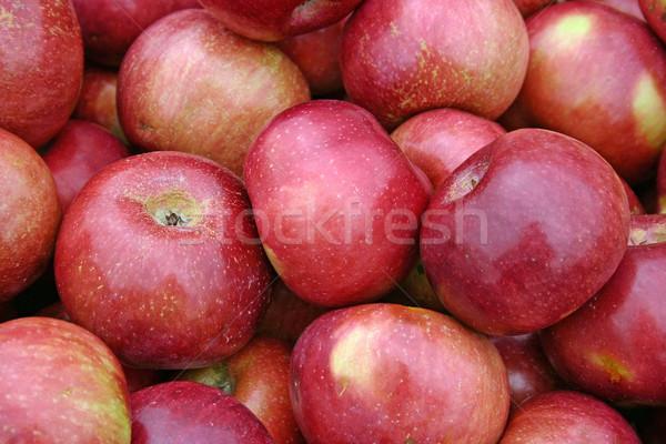 Almák nagyobb csoport gyönyörű piros étel farm Stock fotó © chrisbradshaw