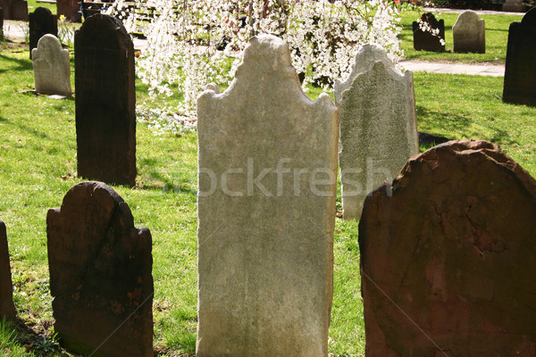 Headstones Stock photo © chrisbradshaw