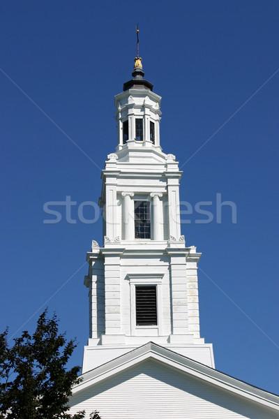 заседание дома мнение башни небе синий Сток-фото © chrisbradshaw