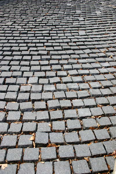 Cobblestone path Stock photo © chrisbradshaw