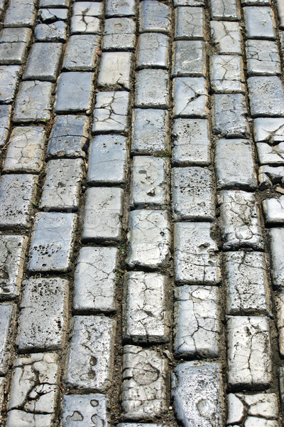 Cobblestone Stock photo © chrisbradshaw