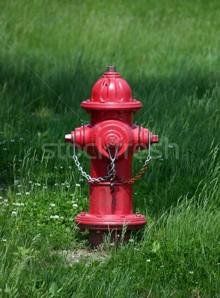 Fire Hydrant Stock photo © chrisbradshaw