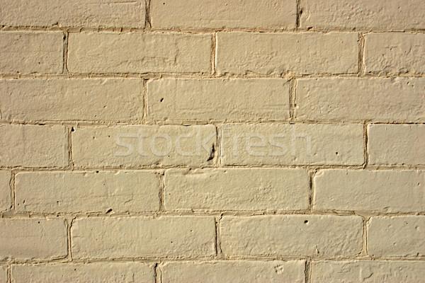 Mur de briques texture construction mur résumé pierre Photo stock © chrisbradshaw