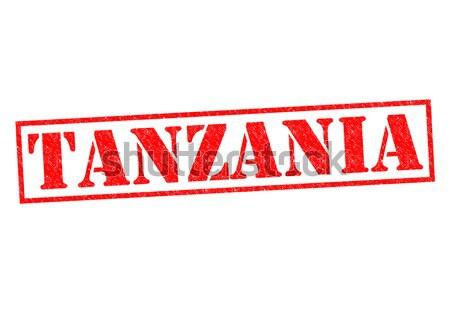 Tanzânia branco férias botão africano Foto stock © chrisdorney