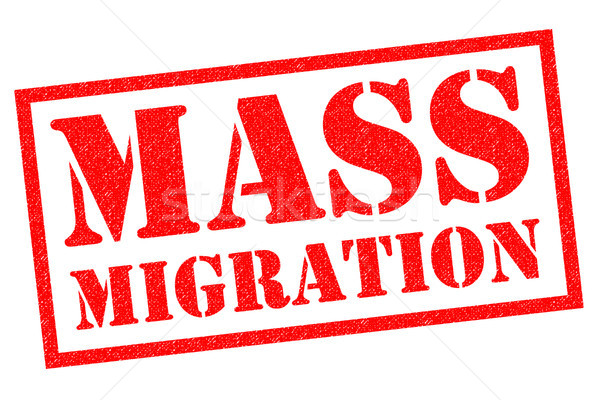 MASS MIGRATION Stock photo © chrisdorney