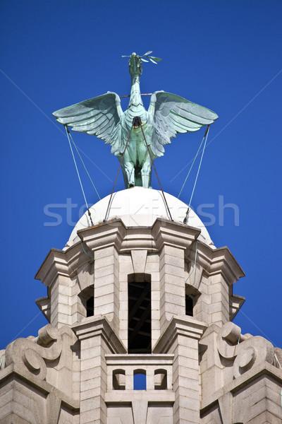 Fígado pássaro real edifício estátua Liverpool Foto stock © chrisdorney