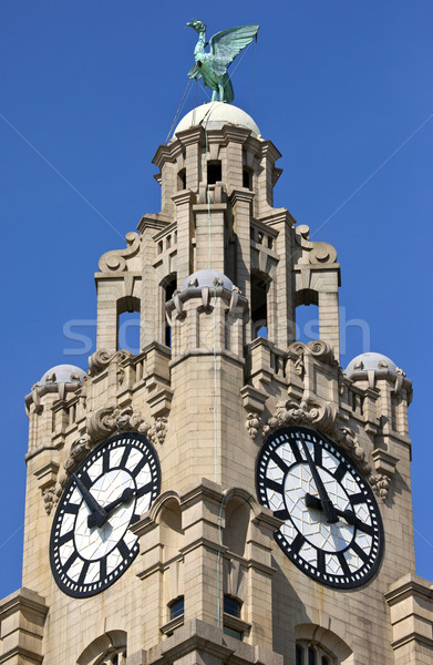 Royal Liver Building in Liverpool Stock photo © chrisdorney