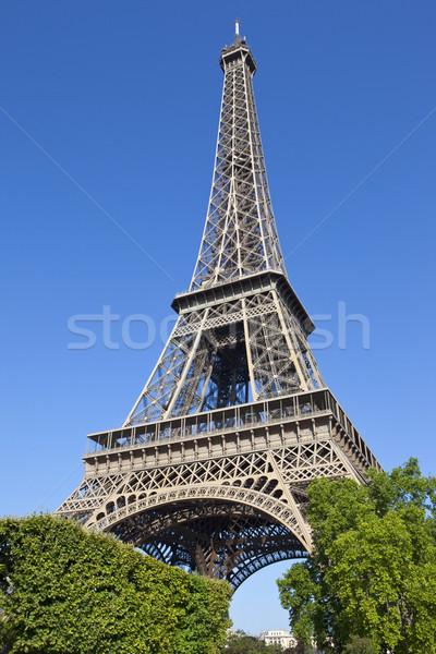 Felfelé néz Eiffel-torony Párizs ikonikus Franciaország fa Stock fotó © chrisdorney