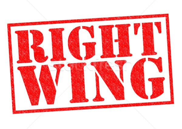 RIGHT WING Stock photo © chrisdorney