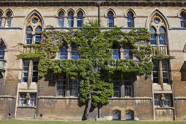 Foto stock: Pradera · edificio · Cristo · iglesia · universidad · oxford