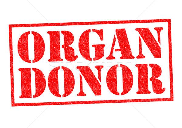 Organo donatore rosso bianco medici Foto d'archivio © chrisdorney