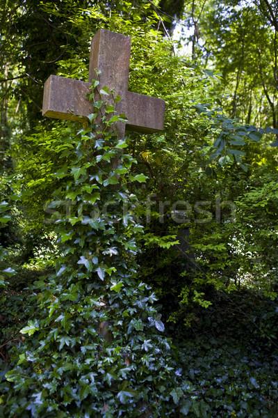 Highgate Cemetery Stock photo © chrisdorney