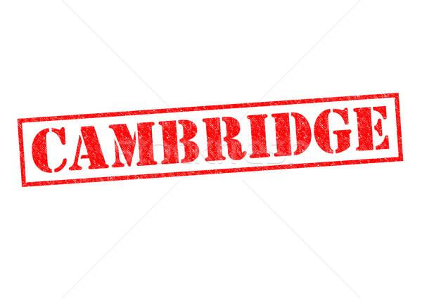 Cambridge branco cidade universidade botão Foto stock © chrisdorney