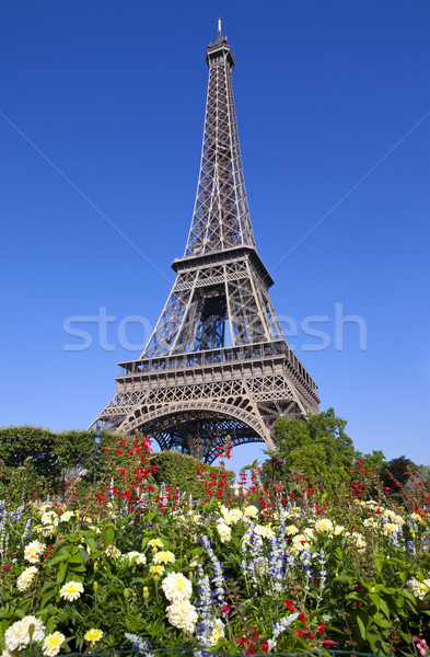 Eiffel Tower in Paris Stock photo © chrisdorney