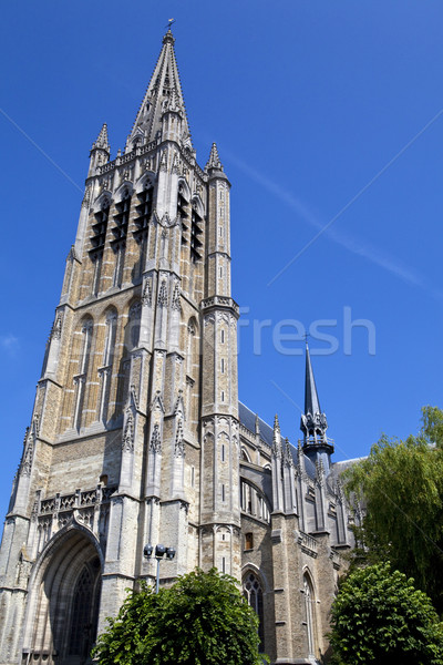 St. Martin's Cathedral in Ypres, Belgium Stock photo © chrisdorney