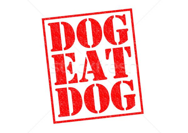 Cane mangiare rosso bianco guerra Foto d'archivio © chrisdorney