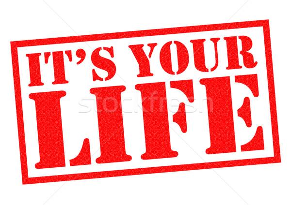 IT'S YOUR LIFE Stock photo © chrisdorney