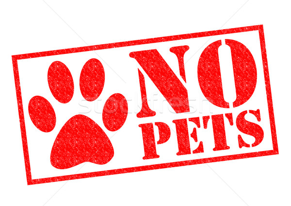 NO PETS Stock photo © chrisdorney