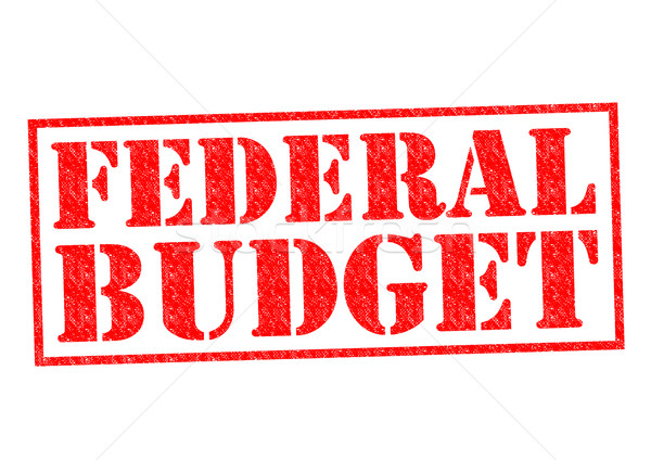 FEDERAL BUDGET Stock photo © chrisdorney