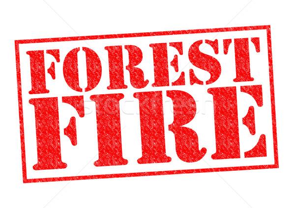 Incendios forestales rojo blanco fuego forestales Foto stock © chrisdorney