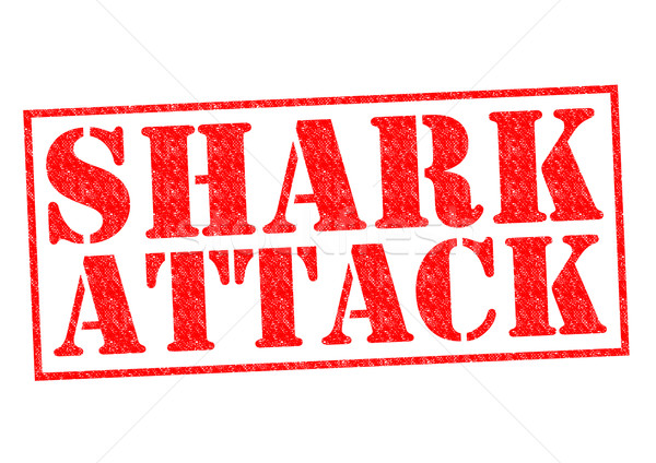 Stockfoto: Haai · aanval · Rood · witte · zee