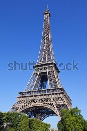 Eiffel-torony Párizs fenséges fa fák építészet Stock fotó © chrisdorney