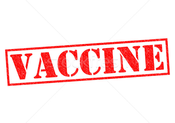 VACCINE Stock photo © chrisdorney