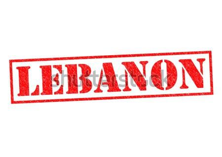レバノン 白 休暇 ボタン パスポート ストックフォト © chrisdorney