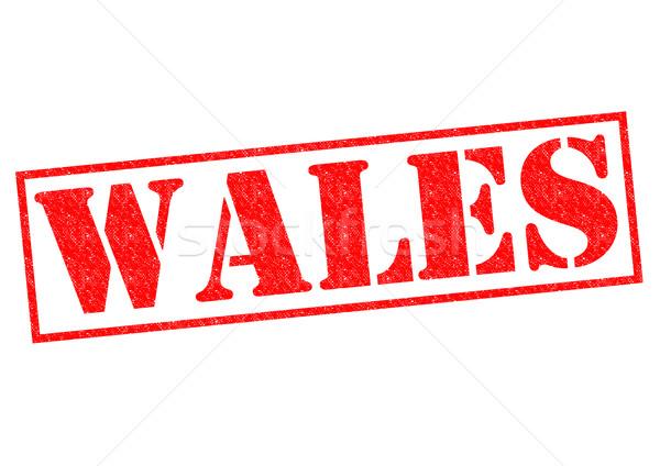 Wales pecsét fehér vakáció gomb útlevél Stock fotó © chrisdorney