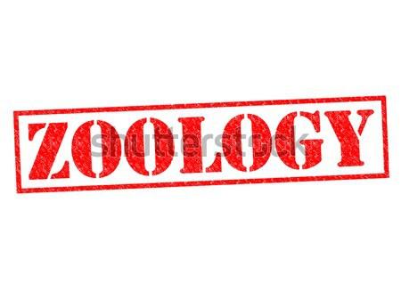 Zoología rojo blanco naturaleza ciencia Foto stock © chrisdorney